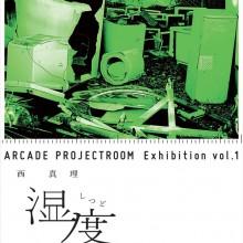 西 真理 個展 / ARCADE PROJECT ROOM