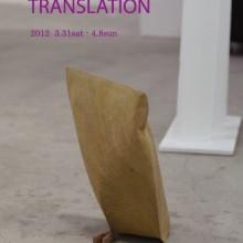 TRANSLATION 大塚泰生 個展